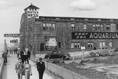 Seaside_Aquarium_1950_600w
